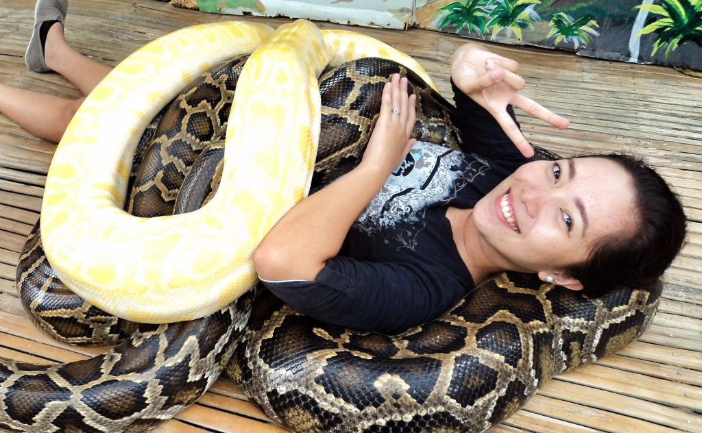free snake massage in cebu