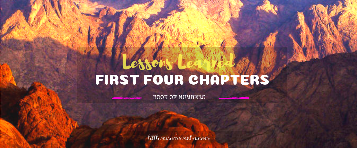 Lessons Learned From the First Four Chapters of the Book of Numbers