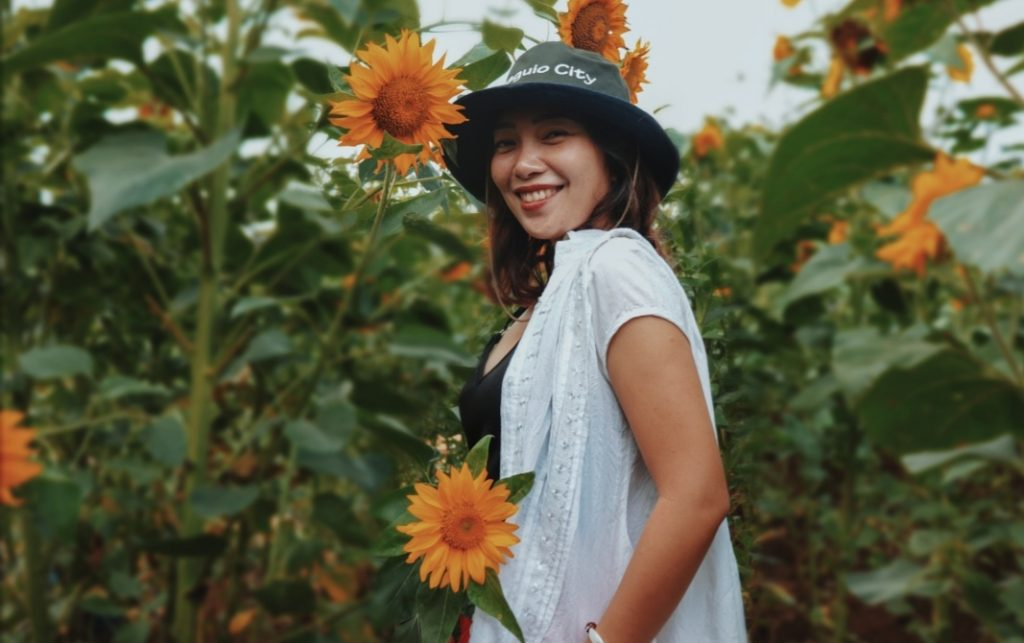 sunflower garden in dalaguete